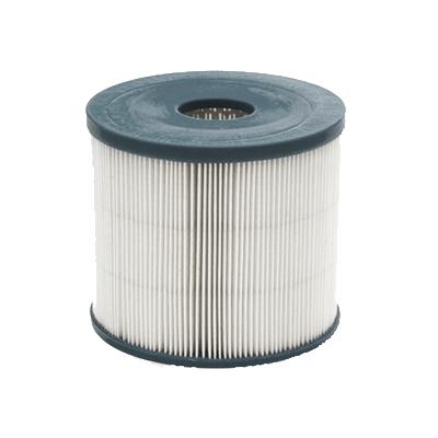 Filtre polyester pour centrale Easy clean 200 et Aspilusa 200