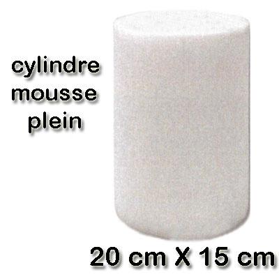Filtre cylindre mousse 20 cm X 15 cm