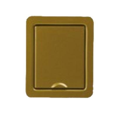Prise en acier inoxydable plate Leonardo Bronze