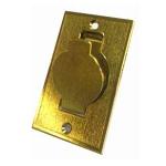 Prise métal plate dorée